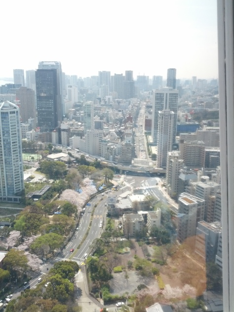 Aussicht vom Tokyo Tower #1