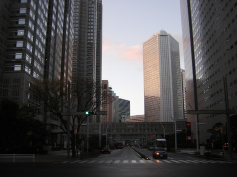 Shinjuku Skyscrapers #4