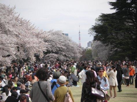 Shinjuku Park #1