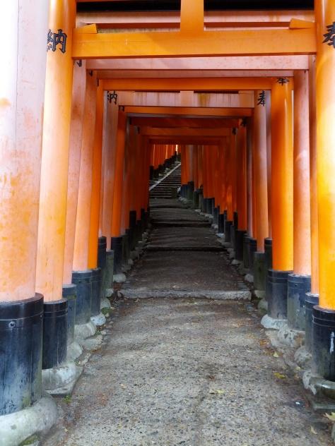 Fushimi Inari Torii #2