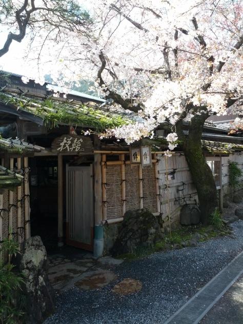 Arashiyama #4