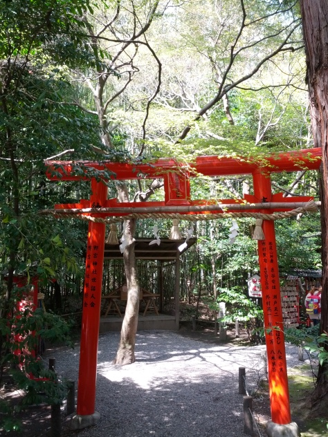 Bambus-Wald #9 - ein kleiner Schrein mittendrin