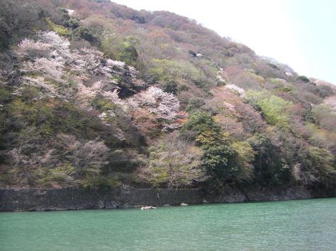 Arashiyama #11