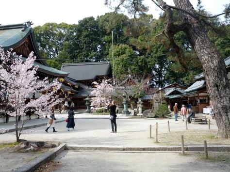 Daitoku-ji #1