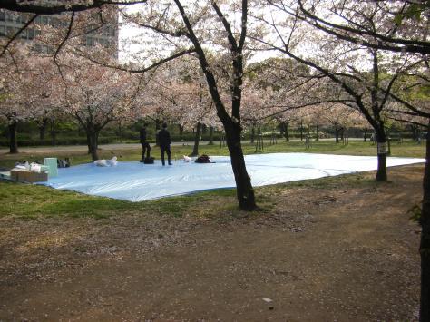 Osaka #7 - zwei Salarymen warten auf ihre Kollegen zum Picknicken und Blütenschauen